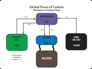 globalcarboncycle