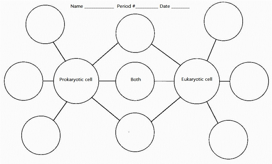 venn diagram paper View essay - week 3 assignment 2 venn diagram paper from mth/156 mth/ 156 at university of phoenix venn diagram paper tariek.
